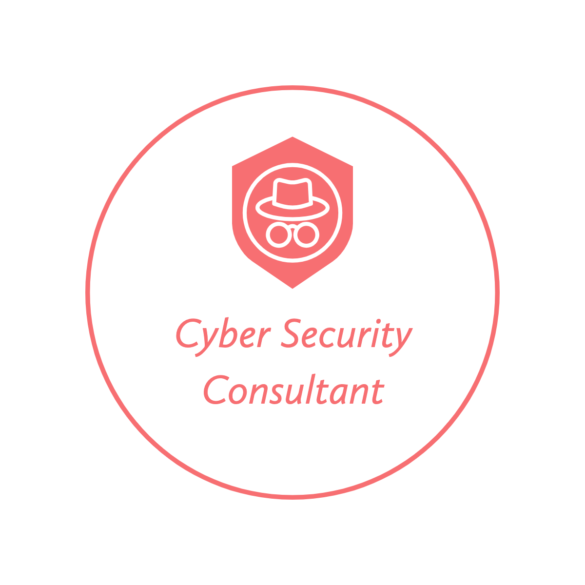 Cyber Security Consultant